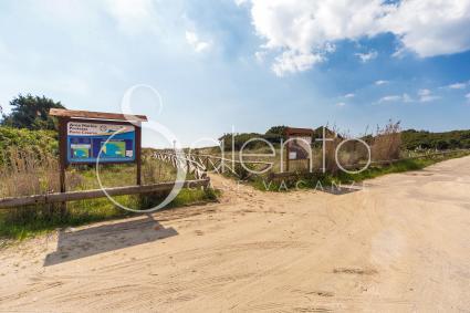 ville e villette - Punta Prosciutto ( Porto Cesareo ) - Riva degli Angeli