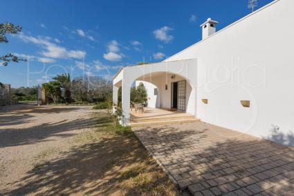 Villa for rent by the sea in Salento