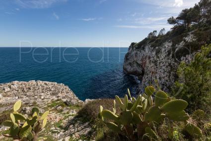 Vista mare dalla Villa in affitto per vacanze nel Salento