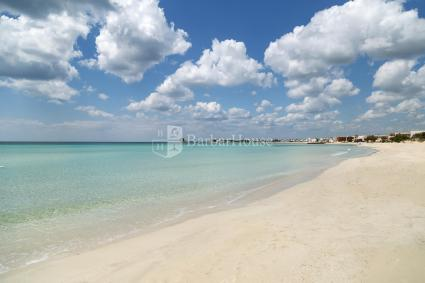 Holiday Apartments - Torre Lapillo ( Porto Cesareo ) - PMR  - Appartamento Dei Delfini