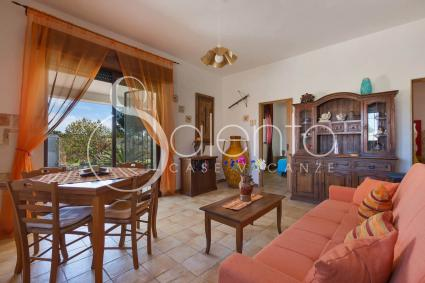 The living room of the holiday home for rent in Torre Castiglione, with sofa bed