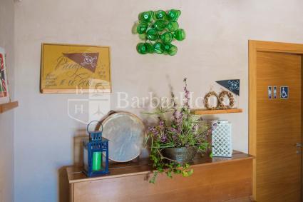 Bed and Breakfast - Cutrofiano ( Gallipoli ) - Agriturismo Piccapane