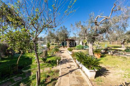 ville e villette - Porto Cesareo ( Porto Cesareo ) - Villa Itaca Garden